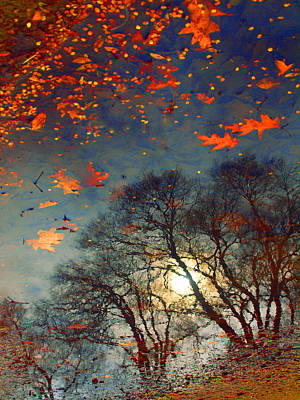 Photograph - The Magic Puddle by Tara Turner