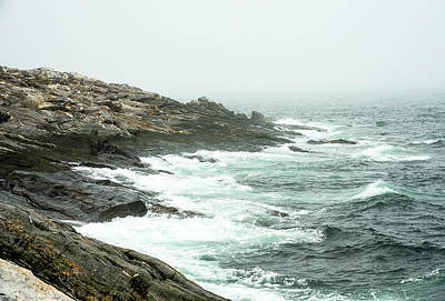 Photograph - The Maine Coast by Gordon Ripley