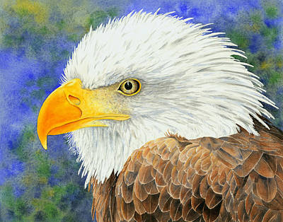 Eagle Painting - The Majestic Bald Eagle by Julie Senf