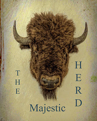 Mixed Media - The Majestic Herd by B Wayne Mullins