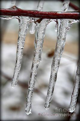 The Makings Of Winter Art Print by Debra Straub