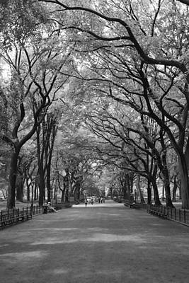 The Mall In Central Park And Poets Walk Art Print