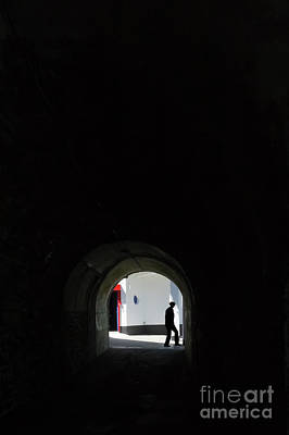Photograph - The Man In The Shadows by Terri Waters
