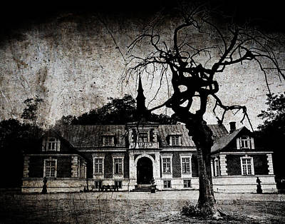 The Mansion Print by Laura Melis