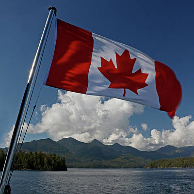 Photograph - The Maple Leaf by Inge Riis McDonald