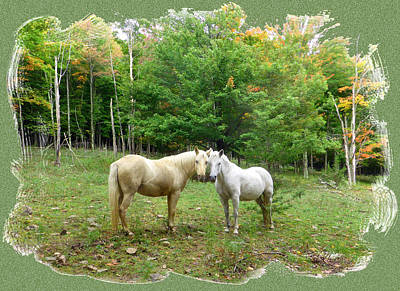 The Mares Watch Art Print by Patricia Keller