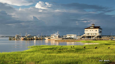 Photograph - The Marina At Waterfront Park by Walt Baker