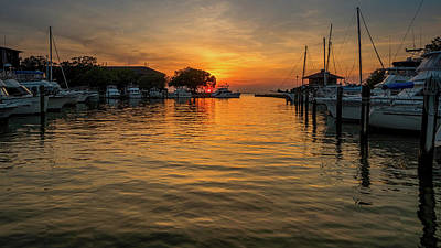 Photograph - The Marina by Brad Boland