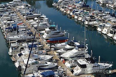 Photograph - The Marina by Renie Rutten