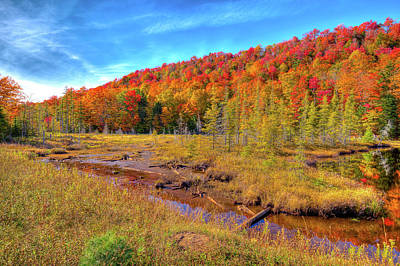 Photograph - The Marsh At Bald Mountain Pond by David Patterson
