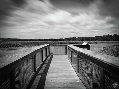 Photograph - The Marsh, No. 5 by Elie Wolf