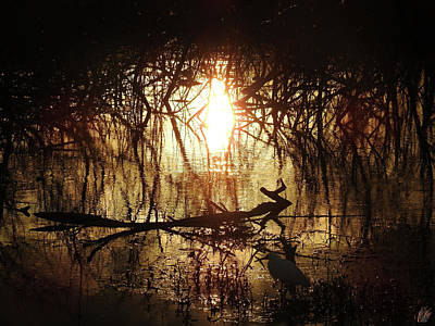 Photograph - The Marsh, No. 8.  by Elie Wolf