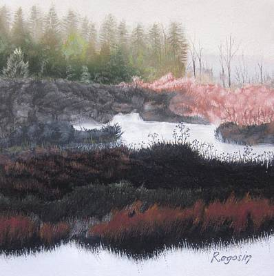 The Marsh Of Changing Color Art Print by Harvey Rogosin