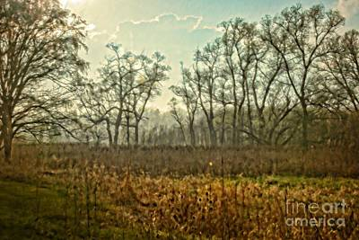 Photograph - The Marsh On The Edge Of Evening by Mary Machare