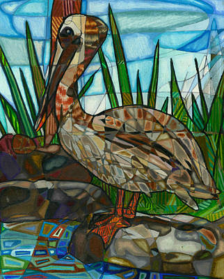 Animals Drawings - The Marsh Pelican by Michelle Brooksbank