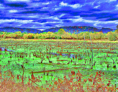 Photograph - The Marshlands by B Wayne Mullins