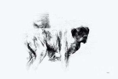 Pets Photograph - The Mastiff  by Steven Digman