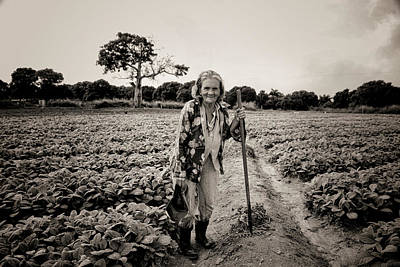 Photograph - The Matriarch by Mary Buck
