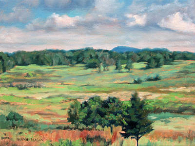 Painting - The Meadow - Big Meadows On Skyline Drive by Bonnie Mason