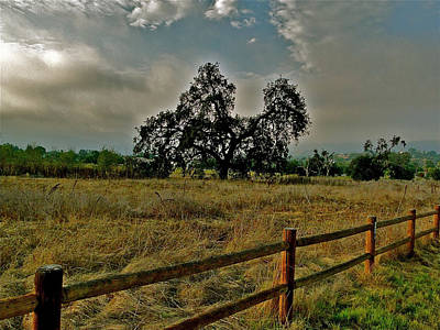 Ojai Wall Art - Photograph - The Meadow by Liz Vernand