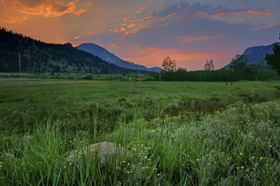 Photograph - The Meadow - Rocky Mountain National Park - Sunrise by Nikolyn McDonald