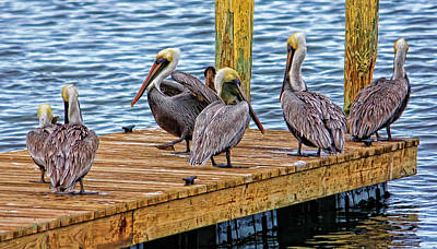 Photograph - The Meeting Place by HH Photography of Florida