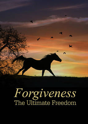The Metaphysical Power Of Forgiveness, Horse And Sunrise Art Print by Stephanie Laird