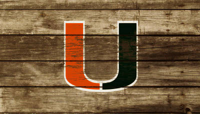 The Miami Hurricanes 3a       Print by Brian Reaves