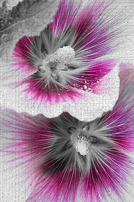 Hollyhock Photograph - The Middle Of The Flowers by Lise-Lotte Larsson