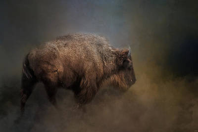 Photograph - The Mighty Bison 1 by Jai Johnson