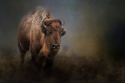Photograph - The Mighty Bison 2 by Jai Johnson