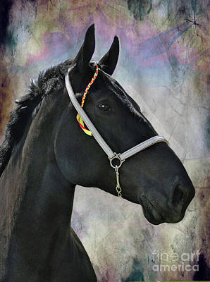 Photograph - The Mighty Black Percheron by Al Bourassa