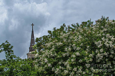 Photograph - The Mighty Cross by Dale Powell