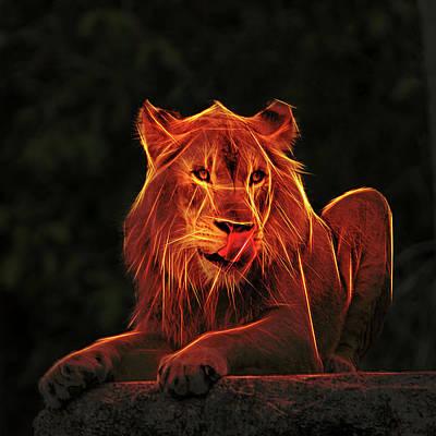 The Mighty Lion Original