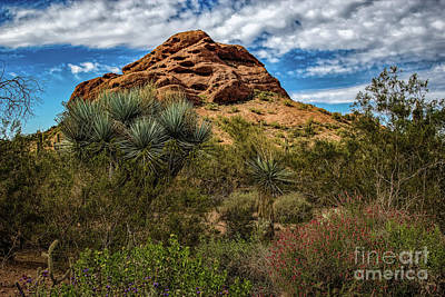 Photograph - The Mighty Papago by Jon Burch Photography