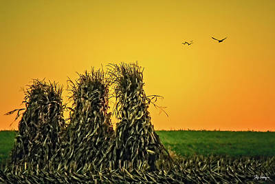 Photograph - The Migration Of Summer by Skip Tribby