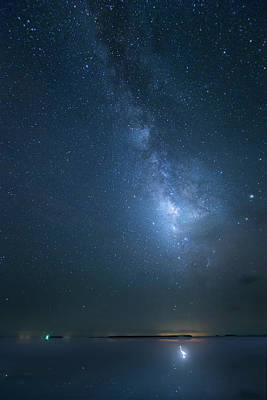 Photograph - The Milky Way And The Egret by Mark Andrew Thomas