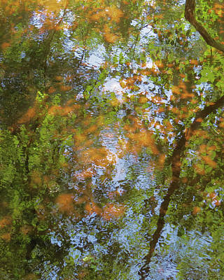 Jodi Diliberto Royalty-Free and Rights-Managed Images - The Mill Pond in Autumn by Jodi DiLiberto