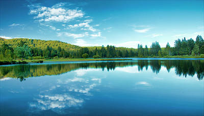 Photograph - The Mill Pond  by Mick Burkey