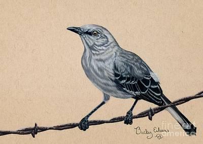 Mockingbird Drawing - The Mimic by Becky Eileen Eller