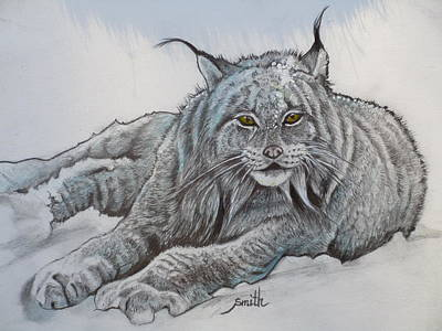 The Missing Lynx Original