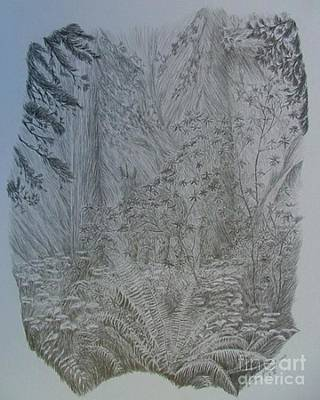 Rain Forest Animals Drawing - The Mist by Dan Hausel