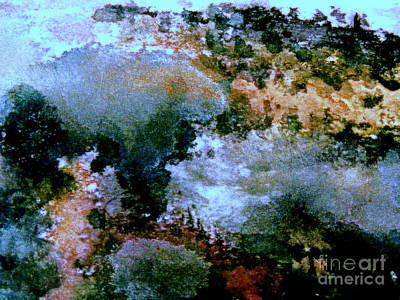 Painting - The Mist  by Nancy Kane Chapman