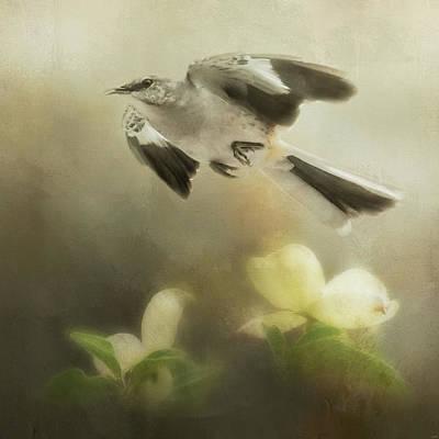 Photograph - The Mockingbirds Spring Flight by Jai Johnson