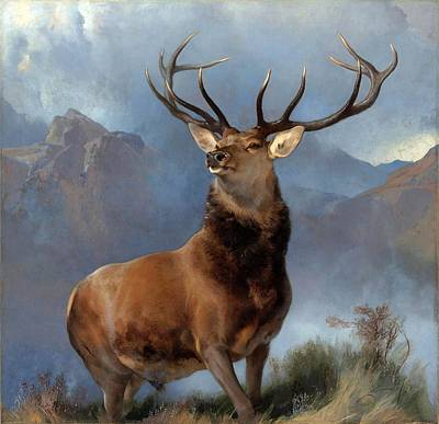 Painting - The Monarch Of The Glen  by Edwin Henry Landseer