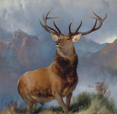Glen Painting - The Monarch Of The Glen by Sir Edwin Henry Landseer