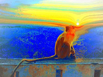 Photograph - The Monkey Who Stole My Sunset Primary Colors Abstract 1a by Sue Jacobi