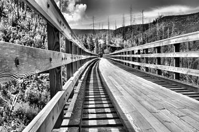 Kelowna Photograph - The Monotone Trestle by Tara Turner