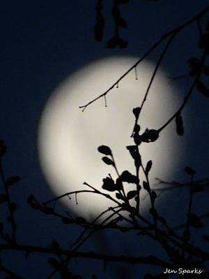 Photograph - The Moon Beyond by Jen Sparks