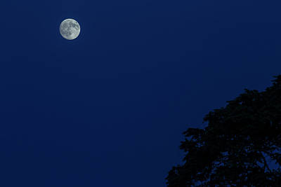 Wall Art - Photograph - The Moon by Cliff Middlebrook